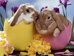 images Wielkanoc